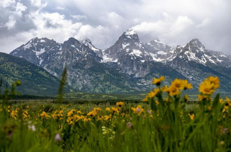Patagonia пожертвует 10 миллионов долларов на экологию