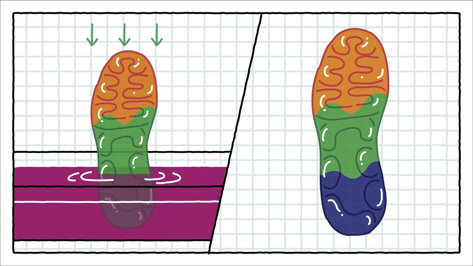 Как Nike окрашивает элементы Air-Sole