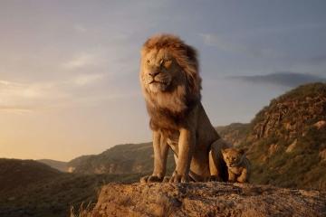Саундтрек к фильму «Король лев» можно будет послушать в июле