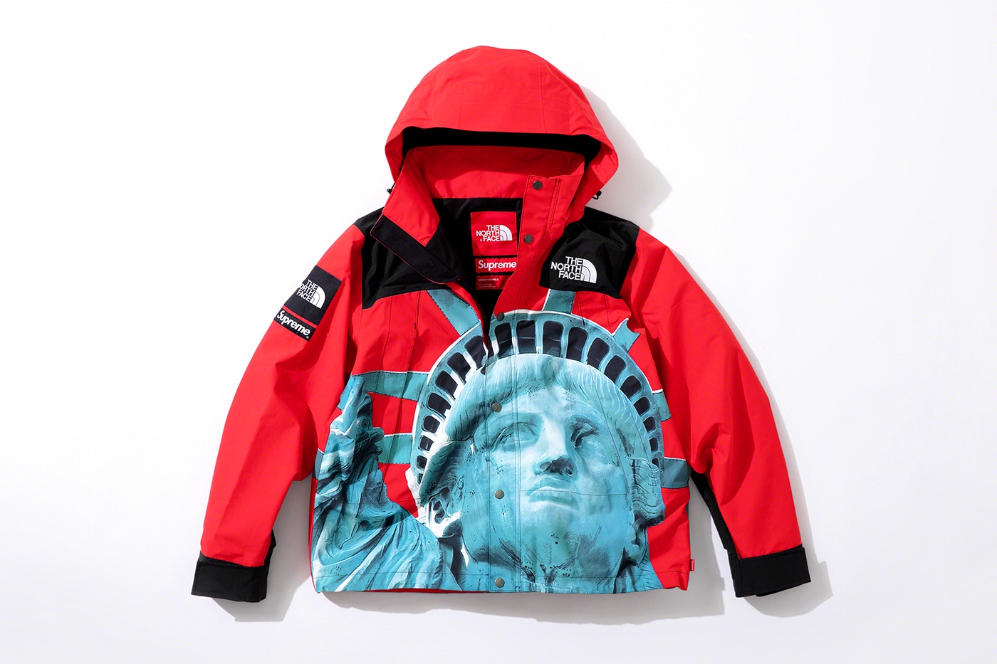 Куртка Supreme x The North Face Fall/Winter 2019