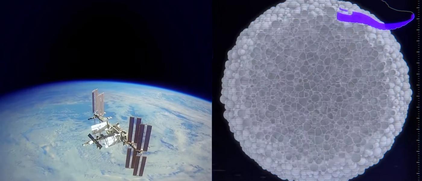 adidas отправит кроссовки в космос