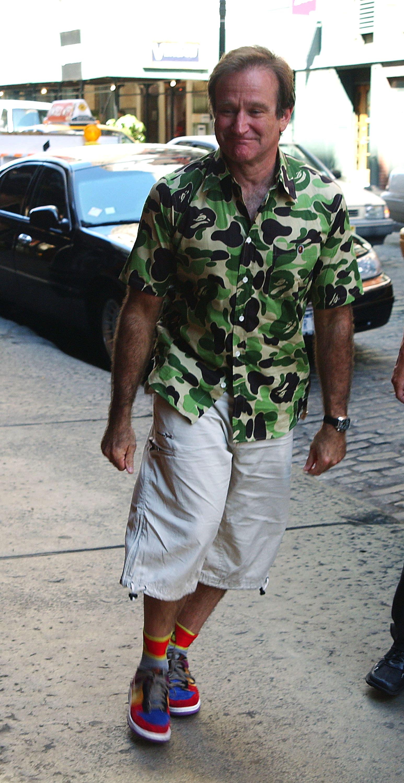 Робин Уильямс в Nike SB Dunk Low «Viotech» и футболке BAPE