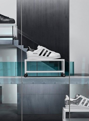 Prada x adidas Superstar - дата релиза