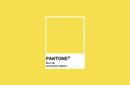Все об институте цвета Pantone